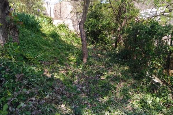 D broussaillage roncier montagnac entretien des travaux for Jardinier paysagiste herault