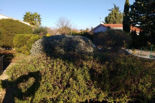 Entretien annuel montagnac entretien des travaux for Jardinier paysagiste herault