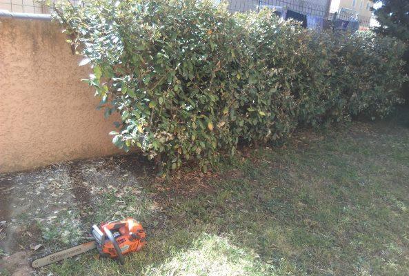 Installation d 39 une cl ture les liquisses cr ation des for Jardinier paysagiste herault